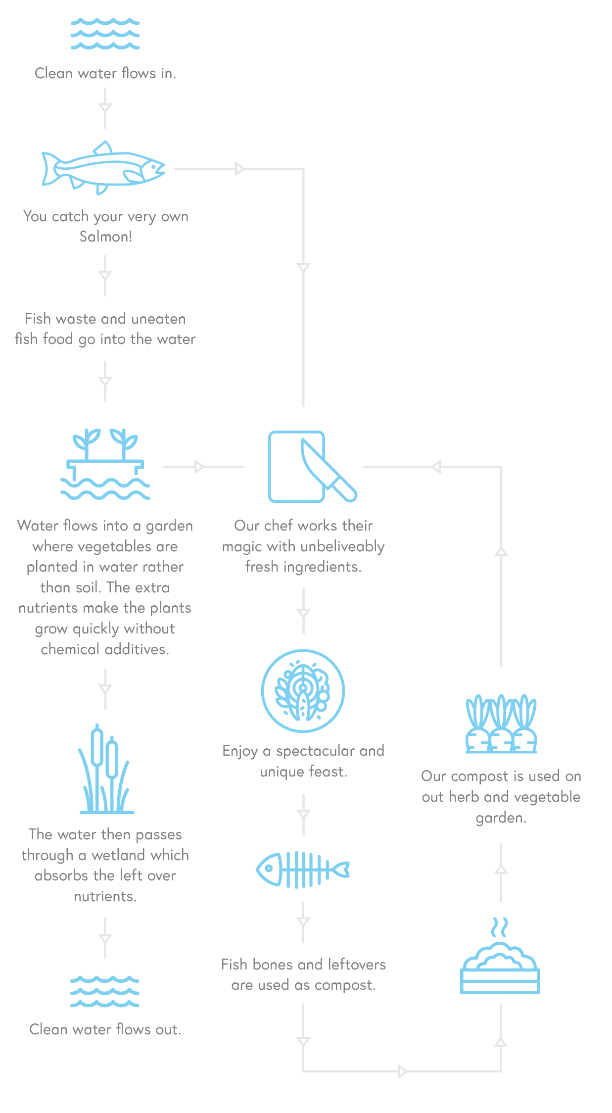 Hook Wanaka environment infographic