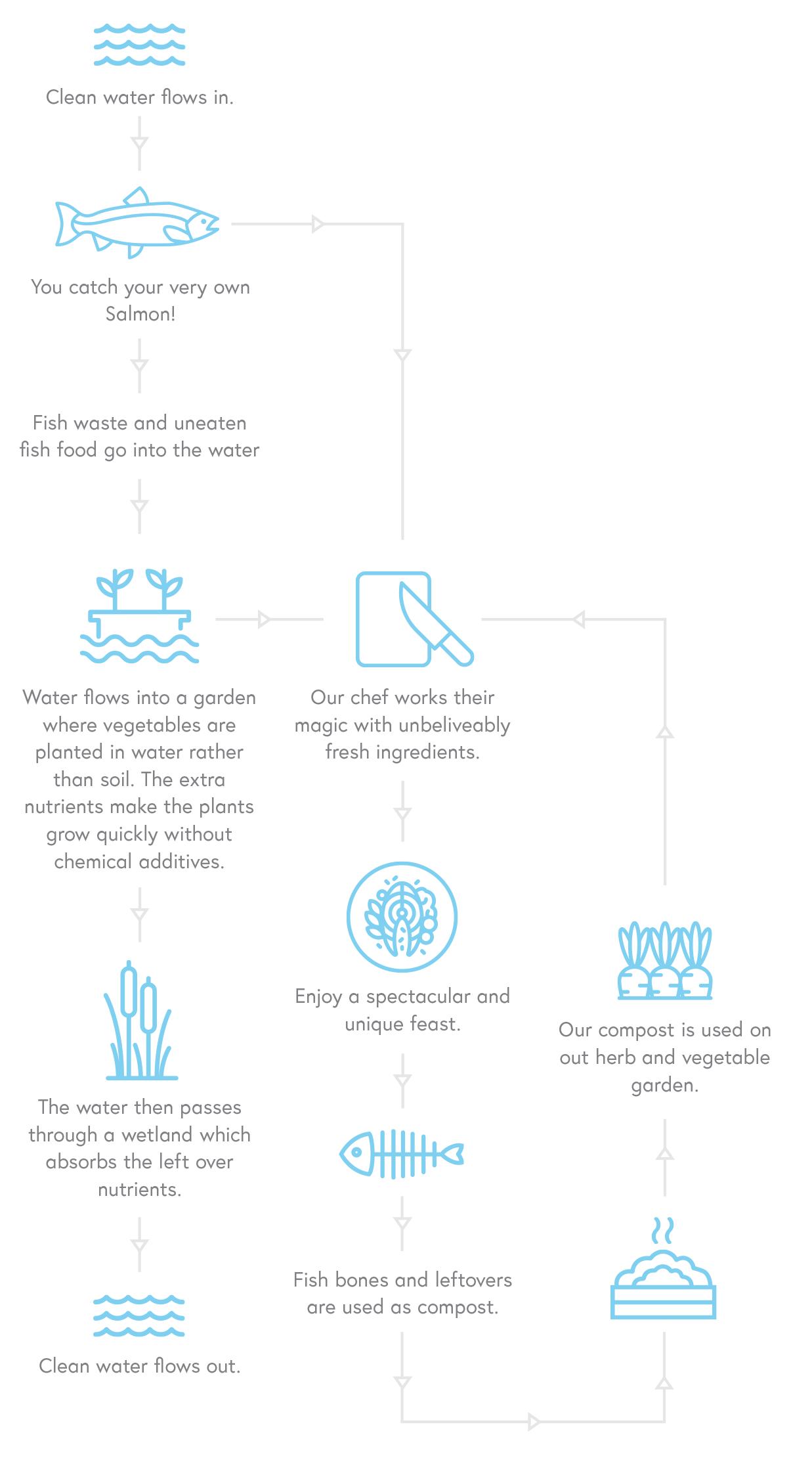 Hook Wanaka environment infographic